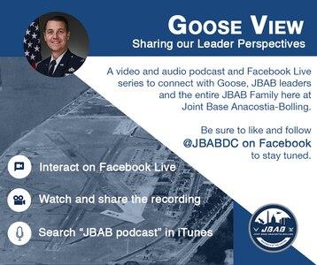 Goose View Infographic