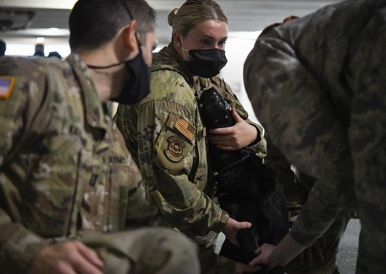 U.S. Air Force Senior Airman Miranda Stillion, 316th Security Support Squadron military working dog handler, holds Ace, MWD, while 316th Medical Group members observe where to insert a catheter during a Canine Tactical Combat Casualty Care Course, a training course for teaching medical professionals how to aid wounded MWDs in deployed conditions, at Malcolm Grow Medical Clinics and Surgery Center at Joint Base Andrews, Md., Nov. 12, 2020.