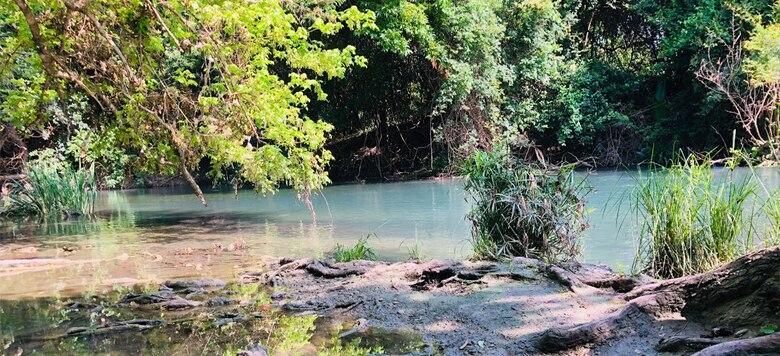 River Road Aquatic Ecosystem Restoration Feasibility Study