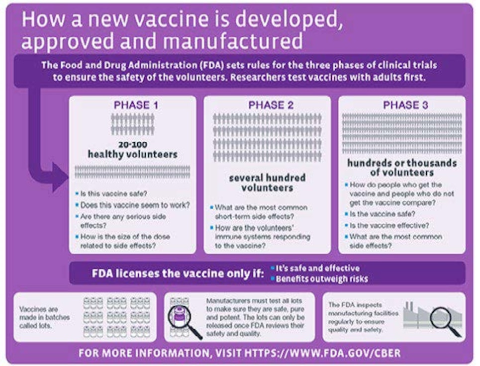 How a new vaccine is developed, approved and manufactured