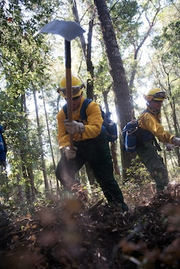 Work all day until the work is done. California National Guard members clear brush near Santa Cruz, California, Sept. 3. These California Guard members receive training year-round with the California Department of Forestry and Fire Protection, which instructs Soldiers and Airmen on wildland firefighting subjects — such as team organization, safety skills, driver's training, using fire shelters, chopping logs and digging trenches. (U.S. Army National Guard photo by Sgt. 1st Class Peter Morrison)