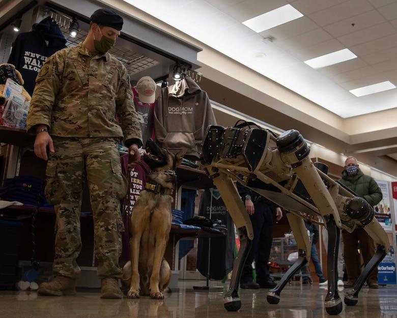 Airman looks at robot dog
