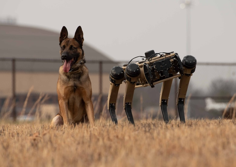 Robot dog and K-9 stand together