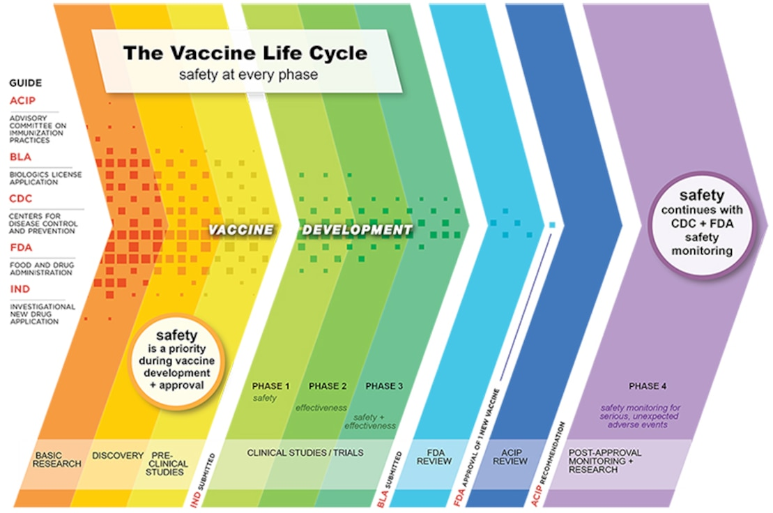 The Vaccine Life Cycle: Safety at Every Phase