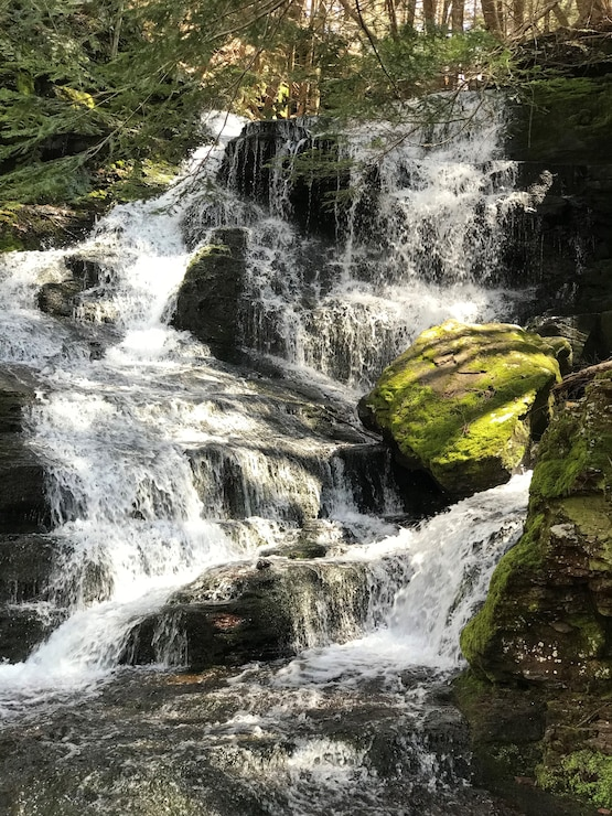 Photo shows a waterfall at Prompton State Park