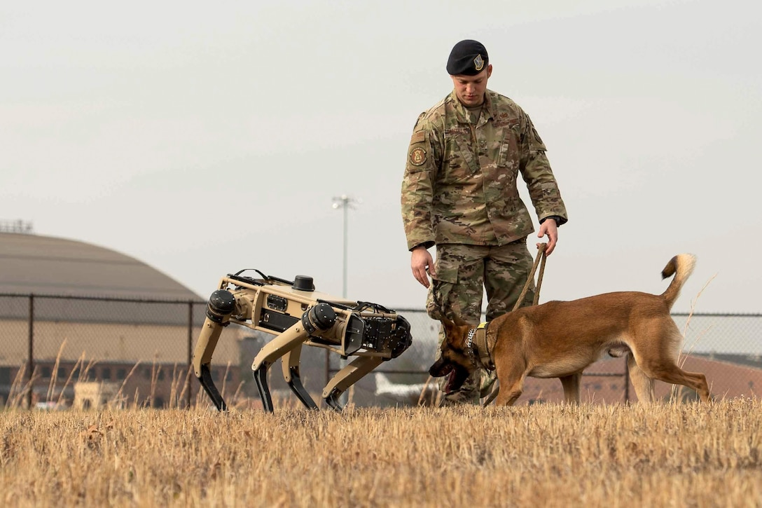 An airman watches as a dog and robot dog face each other in a field.