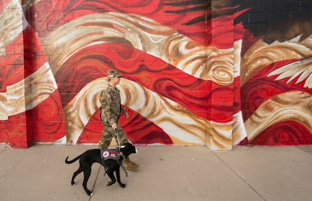 Rescue dogs help heal wounded warriors