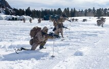 U.S. Marines with 3rd Battalion, 8th Marine Regiment, 2nd Marine Division practice fire team maneuvers on skis at Marine Corps Mountain Warfare Training Center, Bridgeport, Calif., Jan. 27, 2020. As the training progressed, the Marines practiced more advanced maneuvers, carrying heavier loads at a faster pace on adverse terrain. (U.S. Marine Corps photo by Lance Cpl. Jacqueline Parsons)