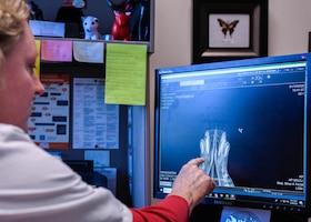 Veterinary Clinic provides care for Luke animals