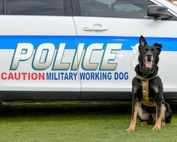 A look at Luke's MWDs