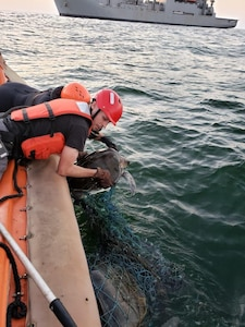 Andrew Destefano and Alexander Fulton, crew members assigned to USNS William Mclean (T-AKE 12), remove abandoned fishing nets from a sea turtle found entangled in the marine debris in the Arabian Sea Feb. 3, 2020. William Mclean is deployed to the U.S. 5th Fleet area of operations in support of naval operations to ensure maritime stability and security in the Central Region, connecting the Mediterranean and Pacific through the Western Indian Ocean and three strategic choke points.