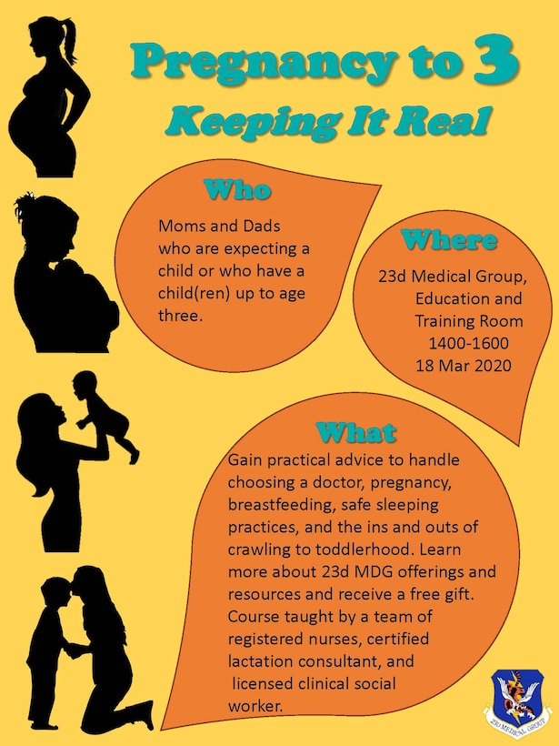 Graphic displaying pregnancy support program.