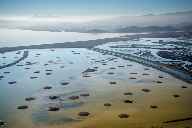 Sears Point is the site of a Natural and Nature-Based Features wetland restoration project in San Pablo Bay, Sonoma County, Calif. To build up marsh elevation, Sonoma Land Trust, Ducks Unlimited and federal, state and private partners utilized round marsh mounds to buffer wind and wave energy, thereby allowing sediment to accrete in the area through natural processes.