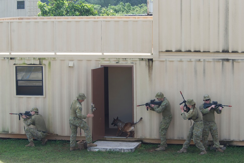 Royal Australian Air Force (RAAF) personnel stand ready as RAAF Military Working Dog (MWD) Xara enters a building to neutralize a simulated threat during Pacific Defender 20-1 at the Pacific Regional Training Center near Andersen Air Force Base, Guam, Feb. 11, 2020.