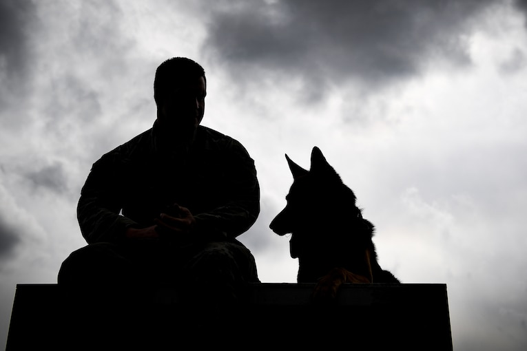 An airman sits with his military working dog.