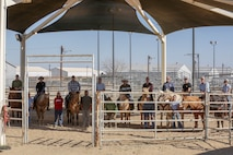 Marine Corps Logistics Base Barstow Marines and base employees stand together with their Marine Corps Mounted Color Guard horseman trainers, during a fun-filled day aboard MCLB Barstow, Calif., Feb. 19. (U.S. Marine Corps photo by Jack J. Adamyk)