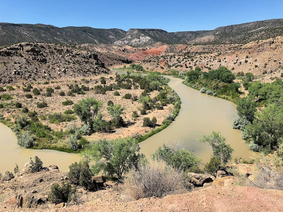 Oxbow in the Rio Chama, just downstream from Abiquiu Dam, June 24, 2018. Photo by Mike Goodrich.