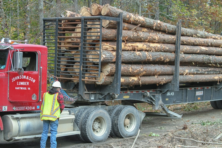 A logging crew conducts tree removal during a timber harvest on the training ranges of Fort A.P. Hill, Virginia.