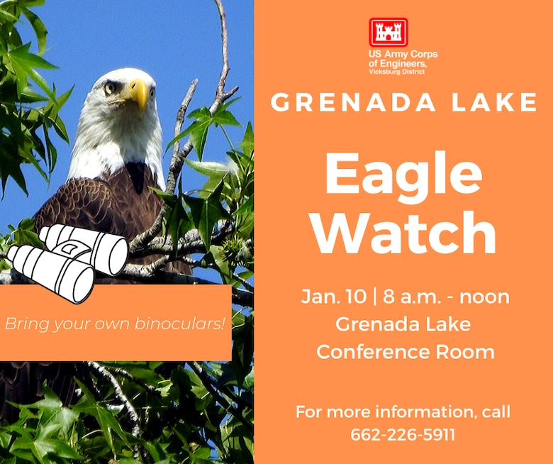 VICKSBURG, Miss. – The U.S. Army Corps of Engineers (USACE) Vicksburg District's north Mississippi lakes will each hold their midwinter bald eagle survey, Eagle Watch, in January.