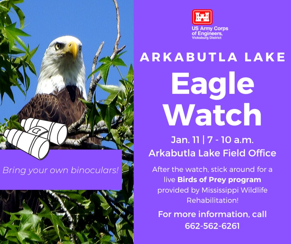 VICKSBURG, Miss. – The U.S. Army Corps of Engineers (USACE) Vicksburg District's north Mississippi lakes will each hold their midwinter bald eagle survey, Eagle Watch, in January.  The Grenada Lake Eagle Watch will take place Jan. 10 from 8 a.m. to noon. Volunteers will meet at the Grenada Lake conference room, located across the street from the visitor center, before the survey begins.  The Arkabutla Lake Eagle Watch will take place Jan. 11 from 7 a.m. to 10 a.m. Volunteers will meet at the Arkabutla Lake Field Office before the survey begins. After the survey, volunteers are invited to return to the field office for a live Birds of Prey program presented by Mississippi Wildlife Rehabilitation.