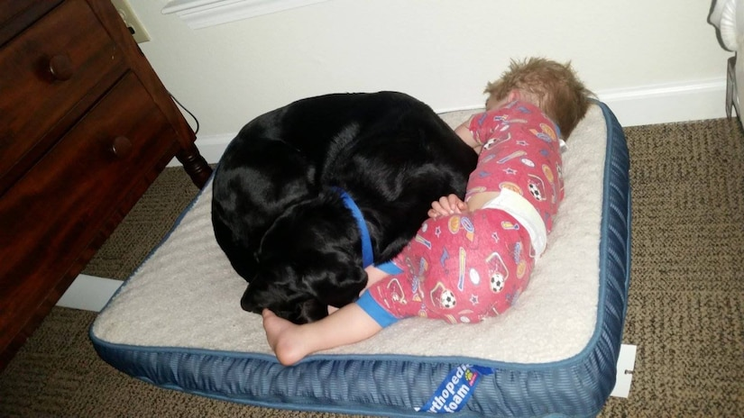 A toddler in pajamas lays up against a black dog curled up on a dog bed. Both appear to be sleeping.