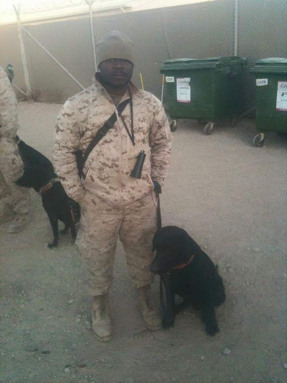 A Marine stands in a desert encampment with his military working dog.