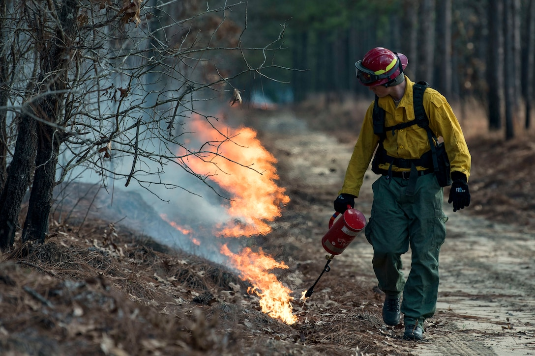 An Air Force firefighter walks through a wooded area setting a path ablaze with a handheld device.
