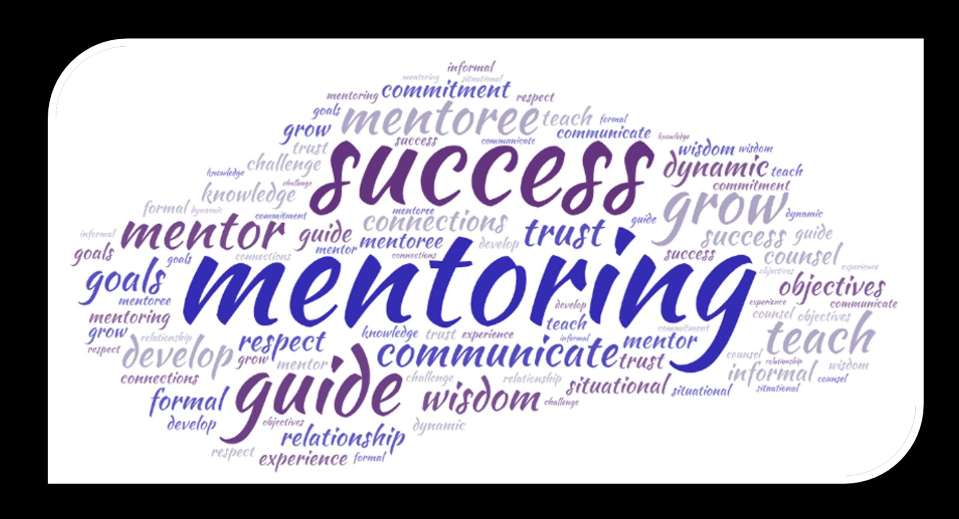 wordcloud of mentoring terms