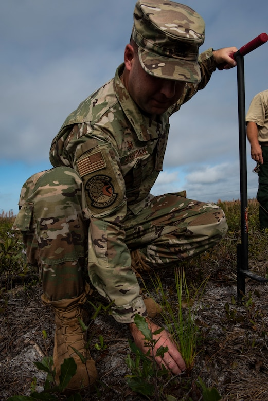U.S. Air Force Lt. Col. Michael Askegren, 325th Civil Engineer Squadron commander, plants a longleaf pine tree at Tyndall Air Force Base, Florida, Jan. 15, 2020. Askegren, along with several other teammates, planted the first longleaf pines as part of a long term, large scale restoration project to restore Tyndall's ecosystem. (U.S. Air Force photo by Staff Sgt. Magen M. Reeves)