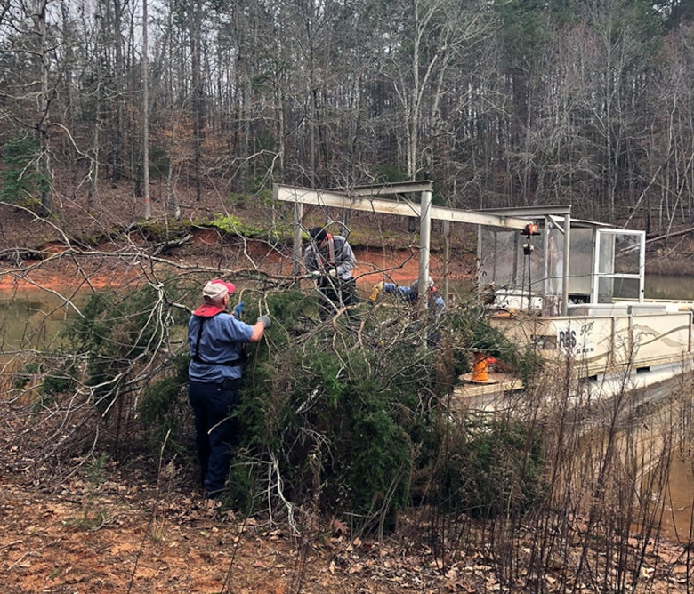 recycling trees at Hartwell lake