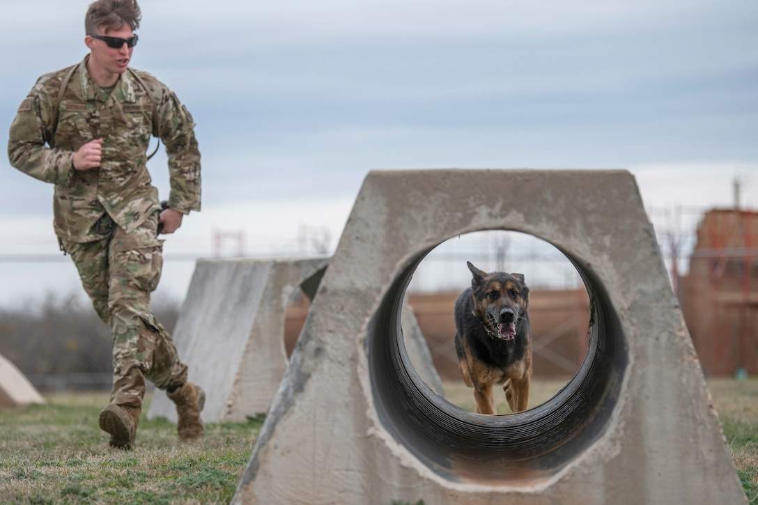 An airman runs with a dog who is about to go through a small tunnel.
