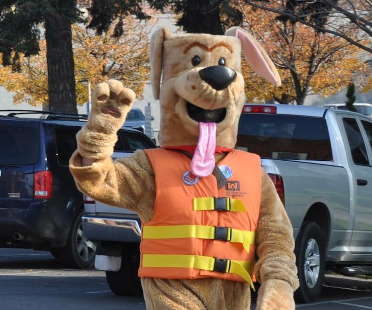 photo of Bobber the Safety Dog