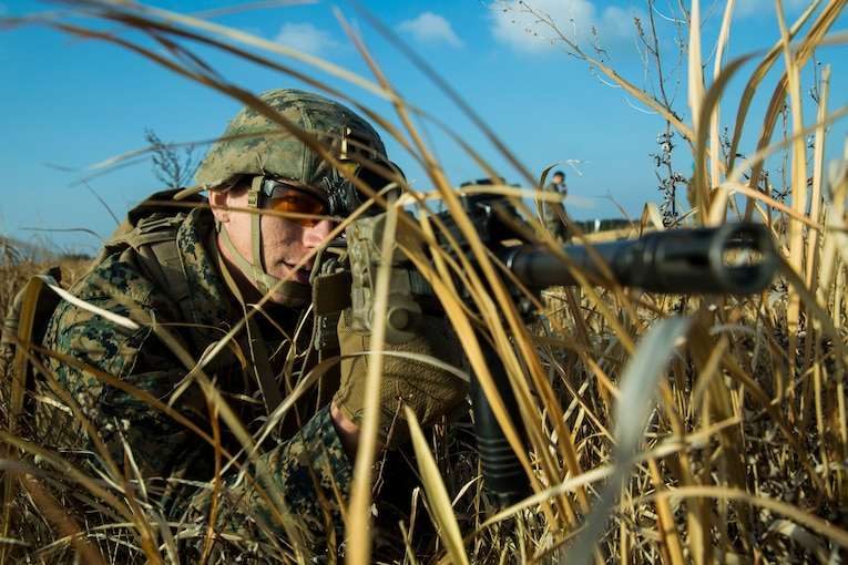 A Marine in the grass points a rifle.