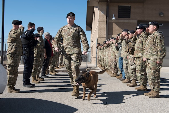 Members of the 47th Security Forces Squadron render a final salute to military working dog Cchico, a 47th SFS military working dog, as his handler Staff Sgt. Keith Collett, a 47th Security Forces Squadron military working dog handler, escorts him to a waiting cruiser Jan. 28, 2020, at Laughlin Air Force Base, Texas. MWD Cchico was officially retired from the U.S. Air Force after 10 years, or 70 dog years of honorable service. (U.S. Air Force photo by Senior Airman John A. Crawford)