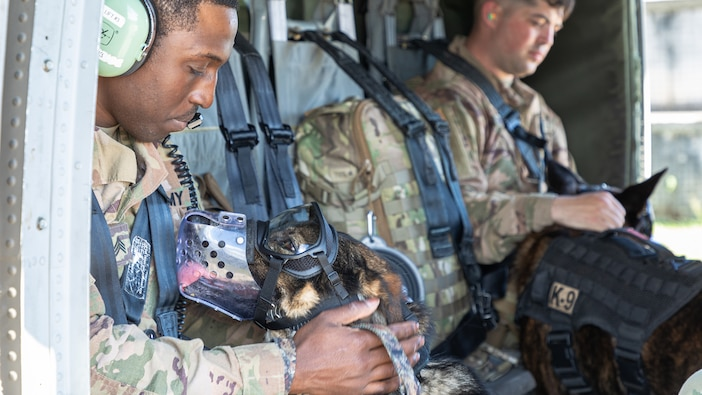 KFOR RC-E Military Working Dog's elements conduct Aerial training