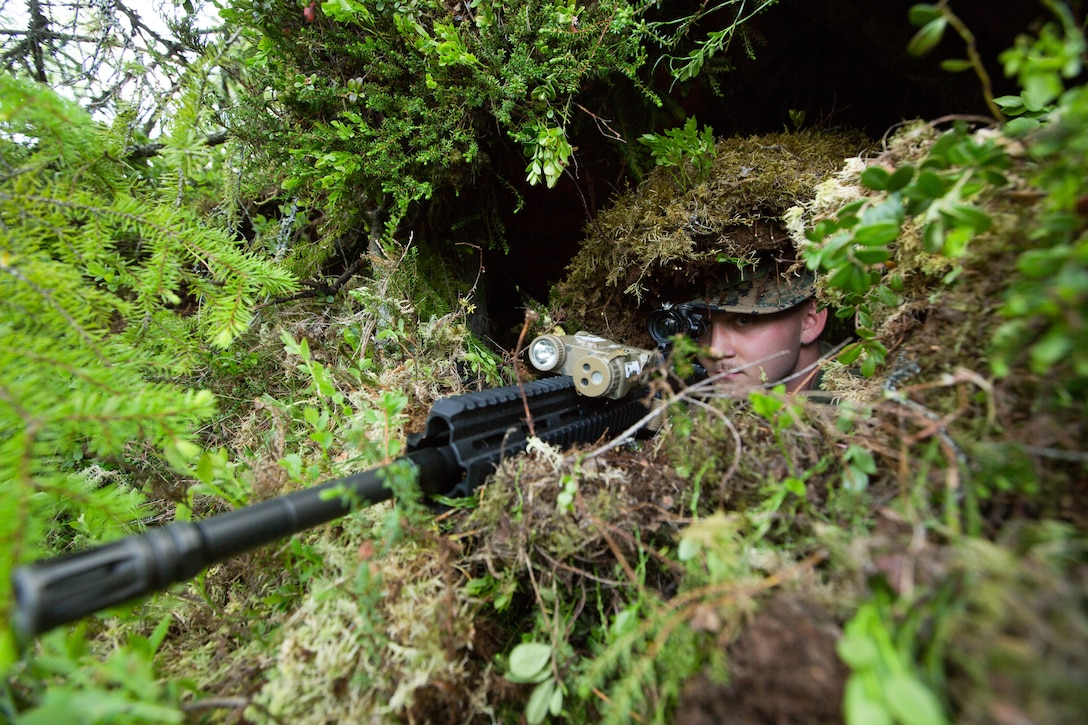 A U.S. Marine tests his concealment in an observation post during a fire team defense range at the Haltdalen Training Facility, Norway, June 17.