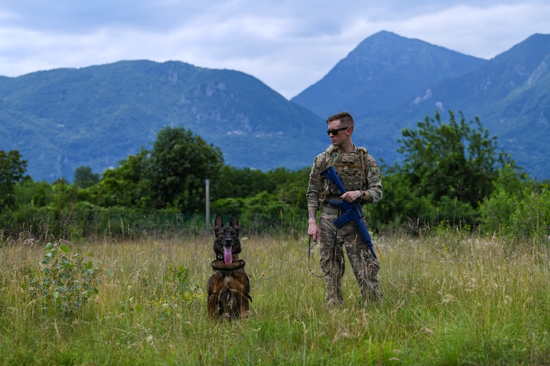 U.S. Air Force Staff Sgt. Benjamin Howard, 31st Security Force Squadron military working dog handler and his K-9 counterpart, Kay, surveils the landscape during Operation Porcupine, June 30, 2020 at Osoppo, Italy. The 31st SFS maintains installation force protection during peacetime and wartime operations within eight separate base areas. (U.S. Air Force photo by Airman 1st Class Ericka A. Woolever)