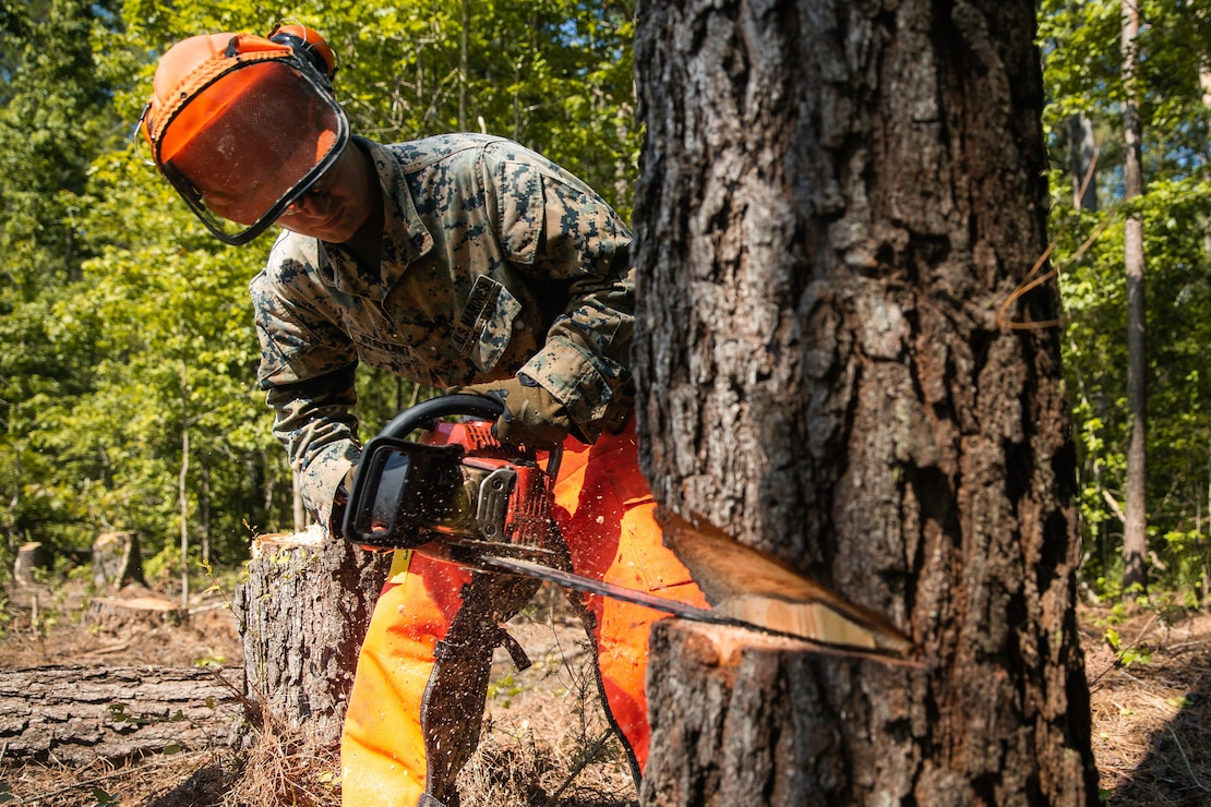 A U.S. Marine cuts a notch into a tree during a chainsaw training event at Camp Johnson, N.C., June 24.
