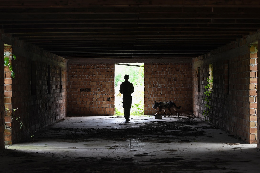 An airman and a military working dog search an abandoned building.