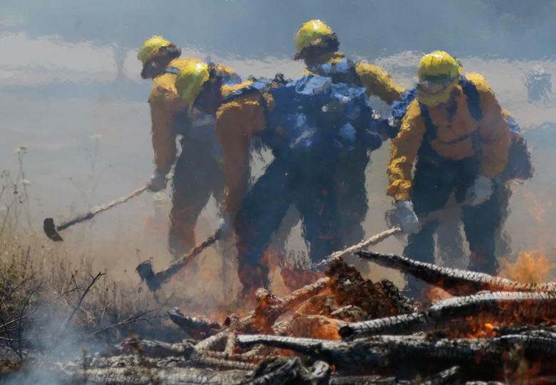 Citizen-Soldiers and -Airmen from the Oregon National Guard stamp out flames during a wildland firefighter training at the Department of Public Safety Standards and Training in Salem, Ore. July 13-17.