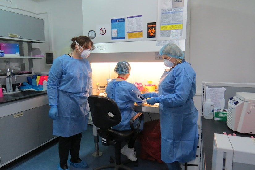 Laboratory technicians work at a biosafety cabinet.