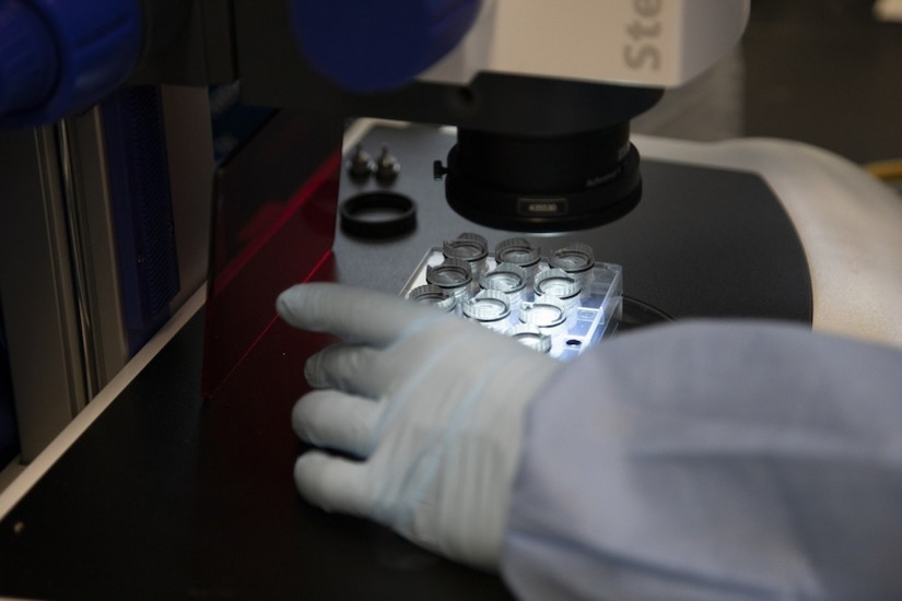 A gloved hand positions a rack of test specimens under a microscope.