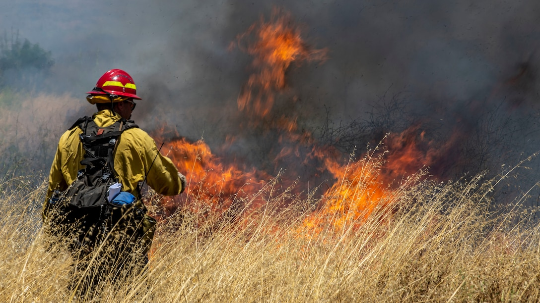 A firefighter ignites vegetation with a drip torch during a controlled burn training as part of CPFD's Fire School on Marine Corps Base Camp Pendleton, Calif., June 3.