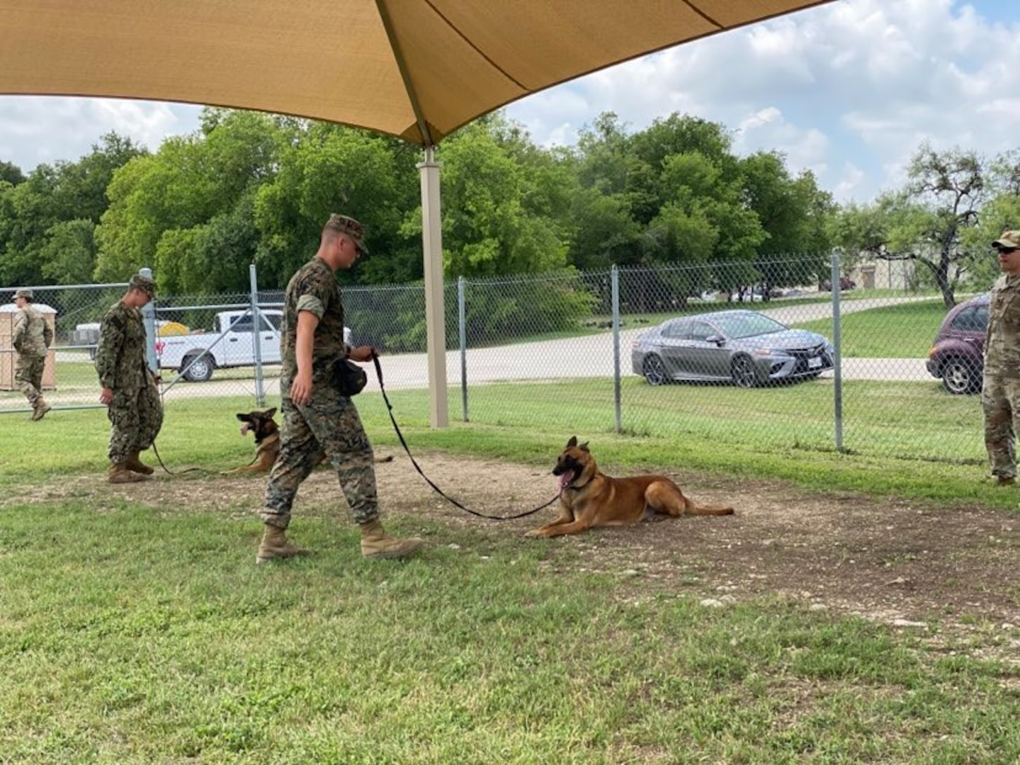 Military working dog handler training students from the Army, Air Force, Marine Corps and Navy lead a virtual K-9 demonstration for the Fair Oaks, Texas, Rotary Club June 3, 2020, at Joint Base San Antonio-Lackland.