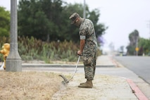 Marines from Marine Corps Air Station Miramar conduct a base-wide cleanup at MCAS Miramar, California, June 4, 2020.