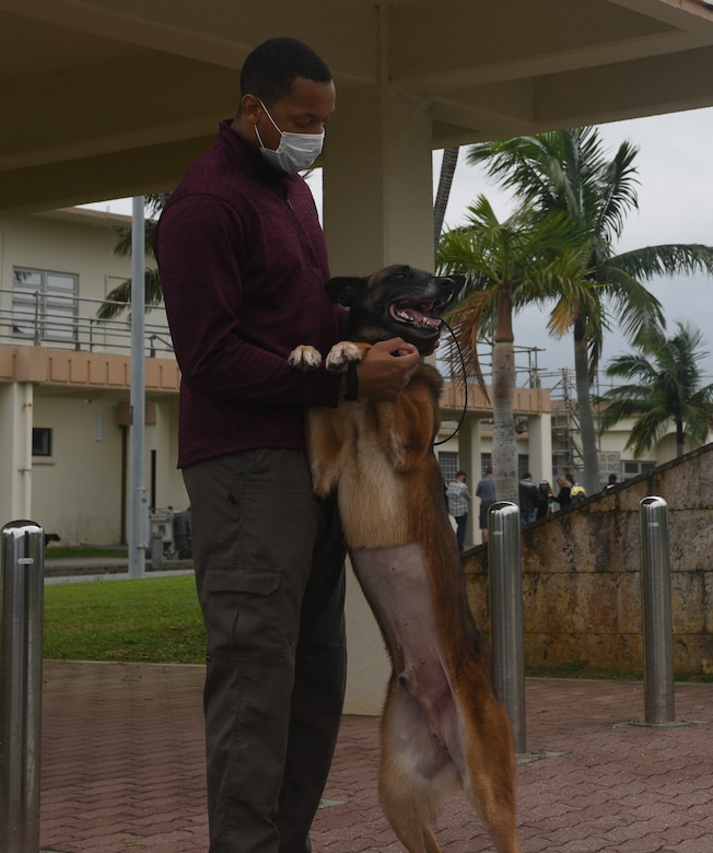 A milirary working dog and handler.