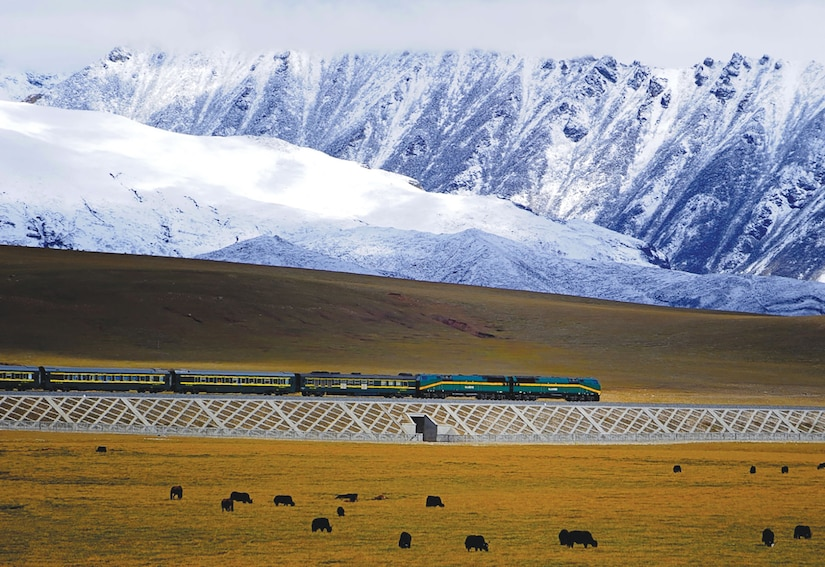 Chinese train in Tibet about 20 km north of Yangbaijan. (Jan Reurink)