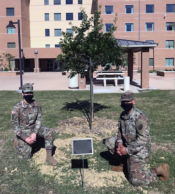 Army Lt. Col. Andrea Castillon, Warrior Transition Battalion commander (left) and Command Sgt. Maj. Gabriel Camacho (right) put the finishing touches on a tree dedicated to all who previously and currently served in the unit at Joint Base San Antonio-Fort Sam Houston June 12. The WTB will be renamed as the Soldier Recovery Unit June 23, 2020.