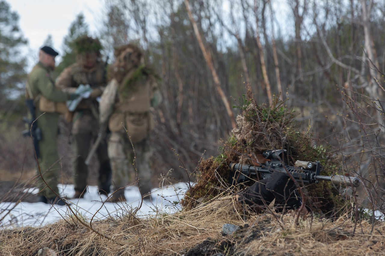 A camouflaged sniper lies prone while aiming his rifle as three other snipers stand in a group behind him to exchange information.