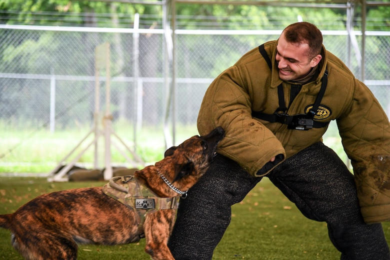 Airmen, canines work paw-in-hand